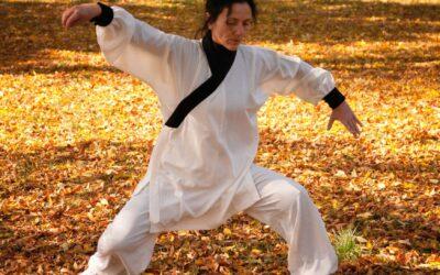 Víkendový kurz: Čchi kung pro začátečníky 24.7.-25.7.2021